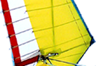 Yellow Microlight